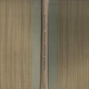 Anttala Esa:Päämajan kaukopartio saarroksissa (129144)