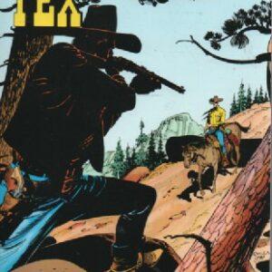 Maxi Tex 36 – Kultasola, 120924